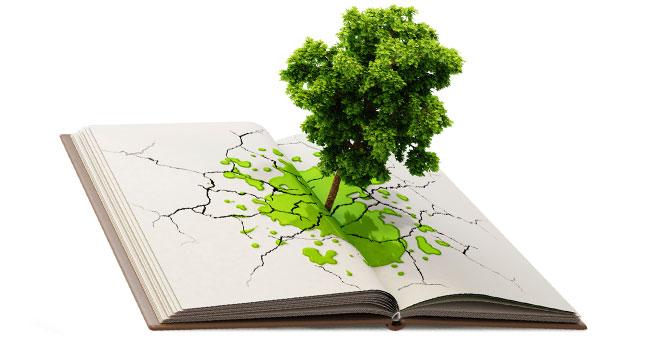 educação-ambiental-escolas-publicas